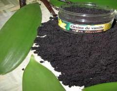Икра из бобов натуральной  ванили